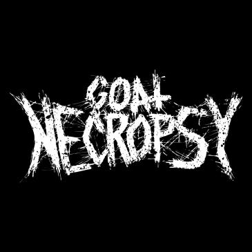 Goat Necropsy